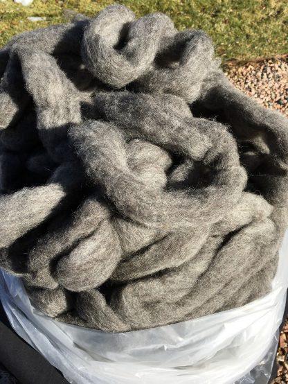 mid-grey Shetland wool roving